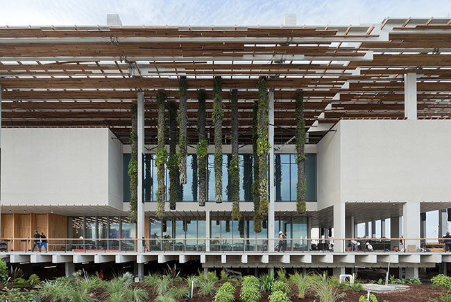Pérez Art Museum, Miami – Contempo enclave by the Bay